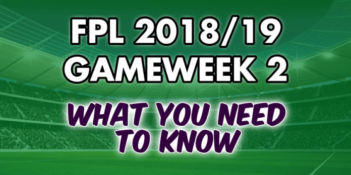 Gameweek 2 Tips
