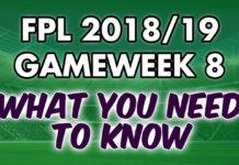 Gameweek 8 Tips