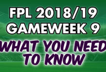 Gameweek 9 Tips
