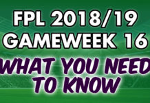 Gameweek 16 Tips