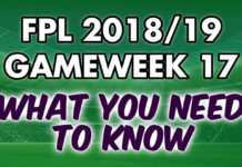 Gameweek 17 Tips
