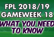 Gameweek 18 Tips