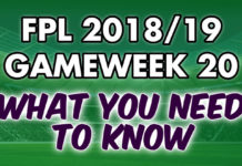Gameweek 20 Tips