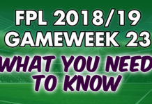 Gameweek 23 Tips
