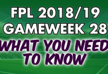 Gameweek 28 Tips