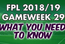 Gameweek 29 Tips